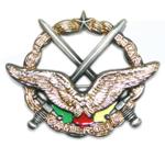 Forces Armées Camerounaises Insigne_armee_de_l_air