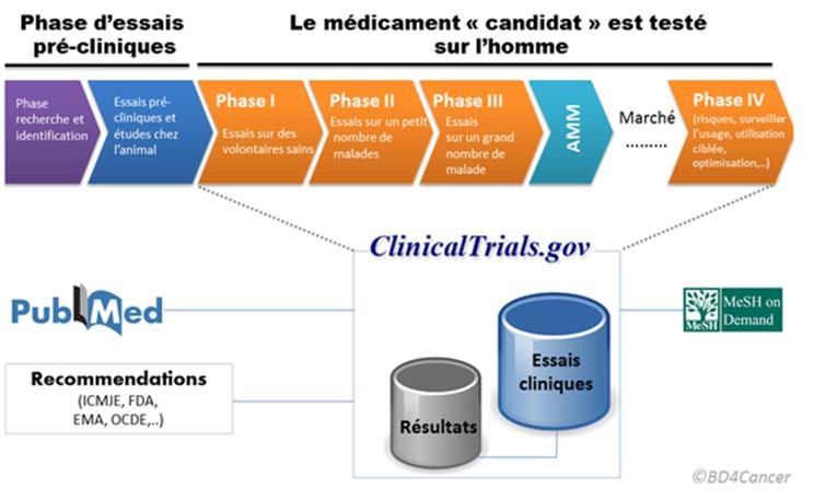 Figure 1 : Schéma présentant les différentes phases d'essais pré-cliniques et cliniques d'un traitement médical ainsi que les banques de données où sont conservés les résultats (source : http://wiki.epidemium.cc/wiki/BD4Cancer#1-_Donn.C3.A9es_des_essais_cliniques) - Crédits : BD4Cancer