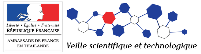 Thérapie génique : succès contre la bêta-thalassémie - France ...