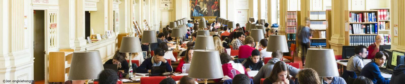 Finance your studies / Scholarships